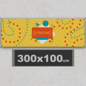 SP300x100-300x300 Home